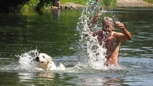 A man and his dog cool off in the Le Tech river in Ortaffa, near the city of Elne, southwestern France