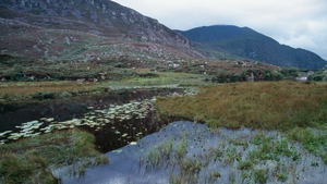 Kerry County Council said it will consider the recommendations made for the Gap of Dunloe