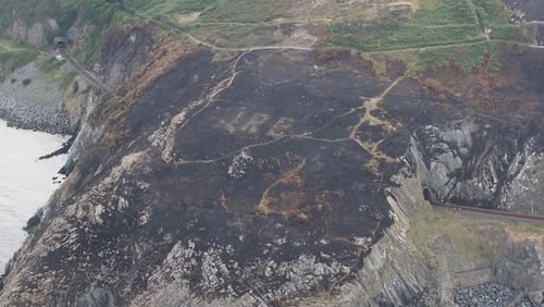 The ÉIRE sign was discovered following a recent gorse fire on Bray Head
