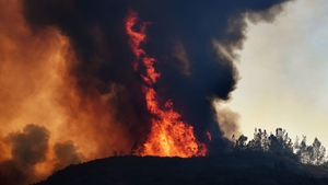 So far this year US fires have burned five million acres