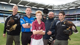 All Ireland Day: The Hurling Final