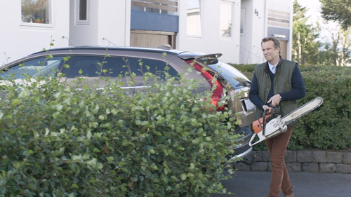 Careful with that chainsaw: Under the Tree, suburban tit-for-tat black comedy from Iceland