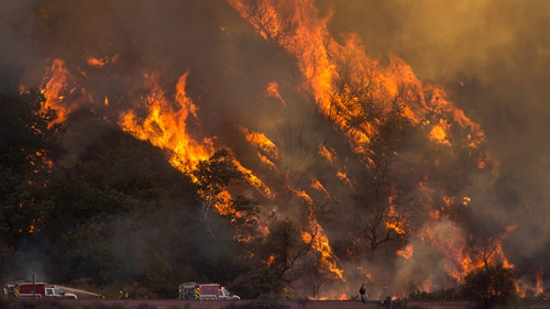 Thousands of firefighters have been tackling wildfires across the state