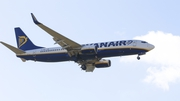 Ryanair said it expects to cut its aircraft to 30 for next summer, down from 58