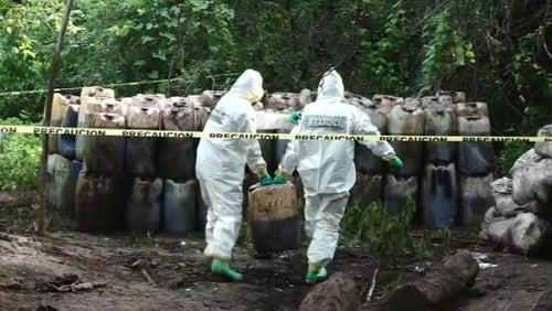 The drugs were incinerated on site due to the difficult access to the remote location