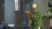 Nine News (Web): Church has to sanction bishops who gravely fail abuse victims - Martin
