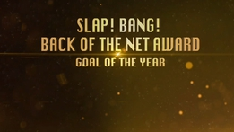 Goal of the year   The Sunday Game
