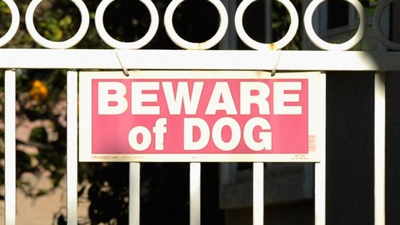 Beware of Dog Getty Images 161597511