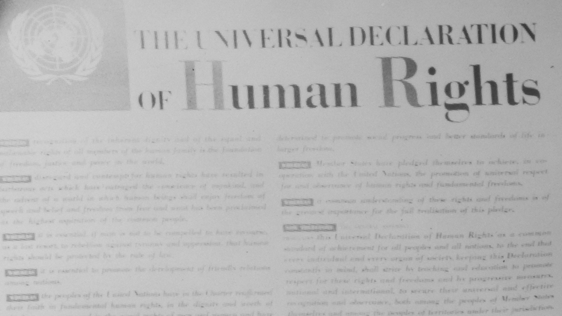 Declaration Of Human Rights 1948