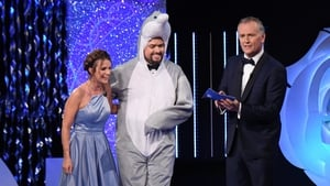 Dolphin fun on the Rose of Tralee