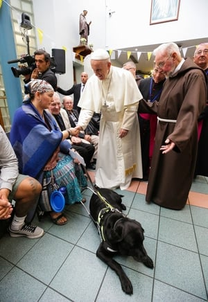 Pope Francis shakes hands with Rosemary Fearson and her guide dog, Kia. Also pictured is Br Kevin Crowley, at the Capuchin Day Centre