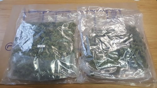 The cannabis herb was found during a search in Miltown Malbay on Sunday