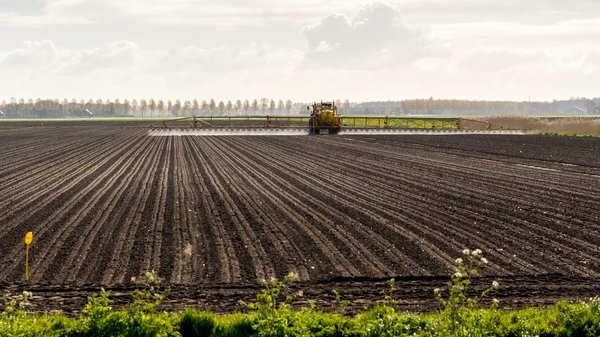 """""""Since GM crops cause the loss of wildlife, it can be suggested that they are not safe."""" Photo: iStock"""