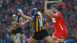 Should Kilkenny have been awarded a penalty? | The Sunday Game
