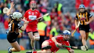 'I've often seen people giving out when a player drops the hurl, saying it should be a free but that's actually part of camogie.'