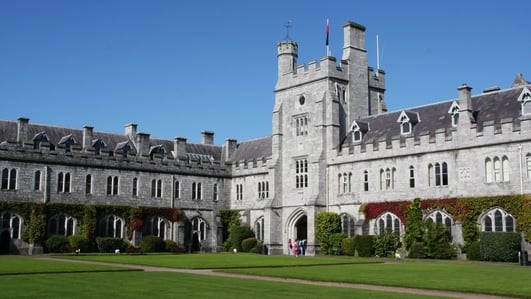 SFI funding dropped for major UCC-based perinatal research centre