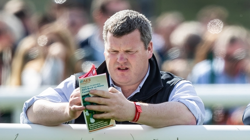 "Gordon Elliott: ""Most of them have their serious work done and we'll just be keeping them ticking over for the next couple of weeks."""