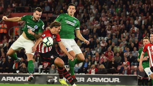 Southampton pair Shane Long and Charlie Austin doubts for Brighton clash