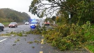 Branches blocked traffic on the Ballyboggan road in Dublin (Pic: Garda Traffic)