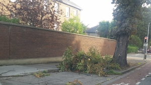 Pedestrians also need to be wary of the chance of falling branches in the high winds