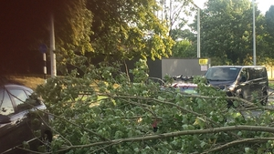 The Stillorgan Road in Dublin has been blocked at various points due to fallen trees and branches
