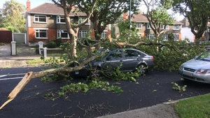 A driver had a narrow escape from a falling tree on Griffith Avenue in Dublin