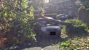 Some cars in Blackrock in Dublin were not so lucky