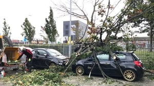 A tree has fallen onto a car in Belfast as Storm Ali moves northwards