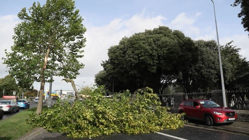 The high winds caused numerous trees to fall around the country