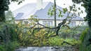 The strong winds of Storm Ali brought down numerous trees, which took out power lines