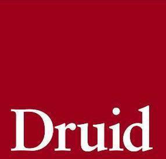 Helen Meaney Reviews Druid Theatres Richard III