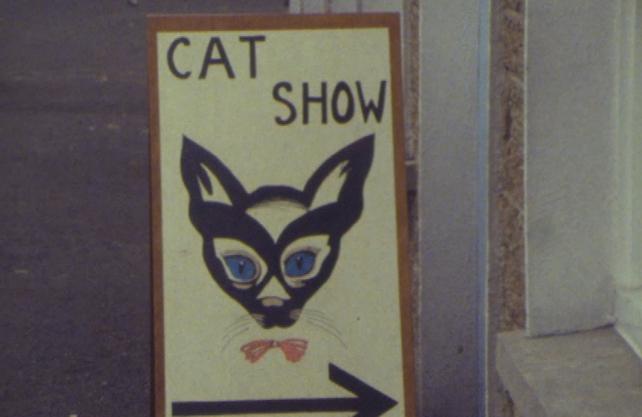 Cat Show (1978)