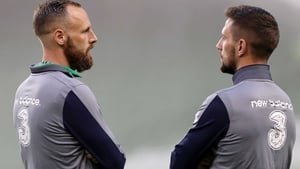 David Meyler (L) and Conor Hourihane were left on the bench against Denmark