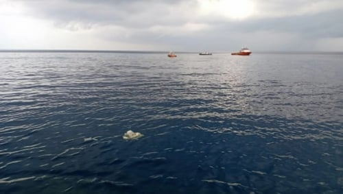 A Indonesian rescue official has estimated that there would be no survivors from the plane crash