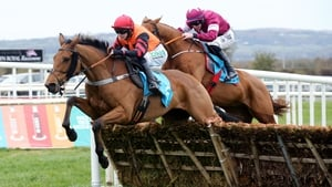 Bedrock (left) missed the Ryanair Hurdle at Leopardstown