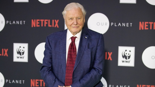 Sir David Attenborough lends voice to Netflix's Our Planet series