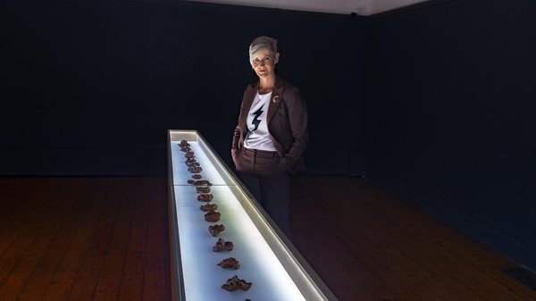 Alice Maher, at the Crawford Gallery, Cork. Pic: Michael McSweeny
