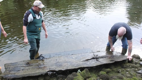Anglers William Gregory and Stephen Murphy lift the logboat onto the river bank