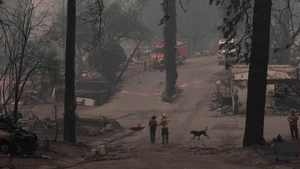The most recent fire last November killed at least 86 people in the deadliest and most destructive blaze in California history