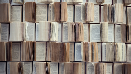 """One of the features of a paper dictionary is its bounded and finite coverage of language"" Photo: iStock"