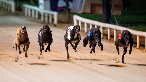 SIS's current greyhound package includes about 30,000 races a year
