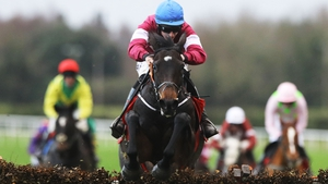 Apple's Jade leaves the field in her wake at Fairyhouse