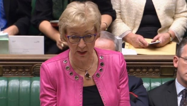 Andrea Leadsom parliament