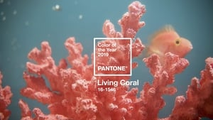 "Pantone named ""Living Colour"" shade of the year for 2019"