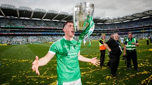 Incredible scenes greeted Limerick's All-Ireland win