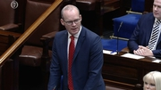 Simon Coveney was speaking in the Dáil