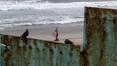 Guatemalan child dies in US custody at border