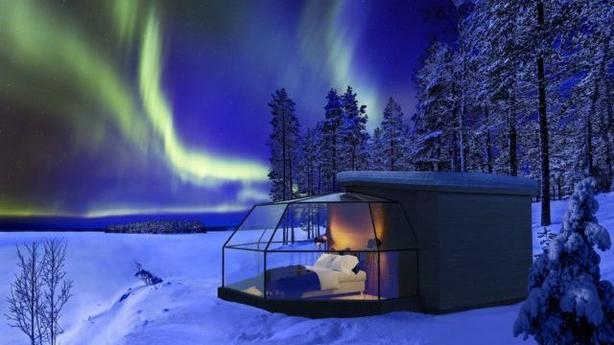 (Arctic Fox/PA)