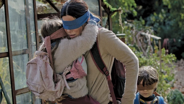 13 of the Best Bird Box Memes