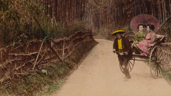 Bamboo Avenue, Kyoto, Japan, 1896, the year in which Kenji Miyazawa was born. His stories explore the rural scene through a veiled sensibility.
